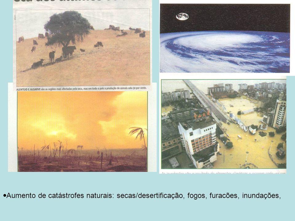 Aumento de catástrofes naturais: secas/desertificação, fogos, furacões, inundações,