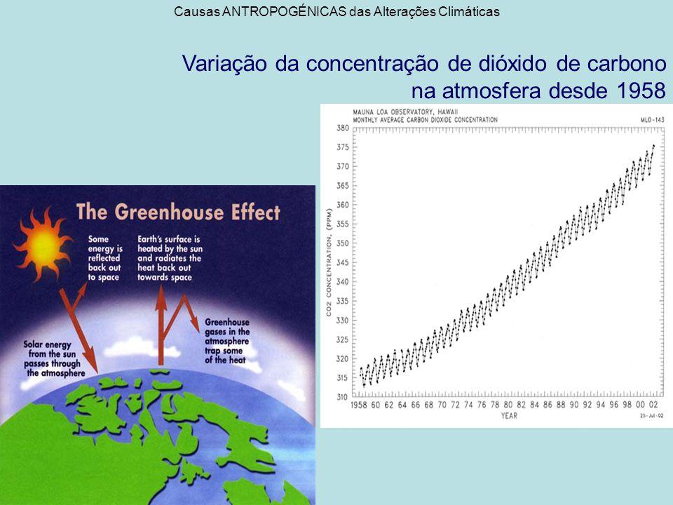 Causas ANTROPOGÉNICAS das Alterações Climáticas