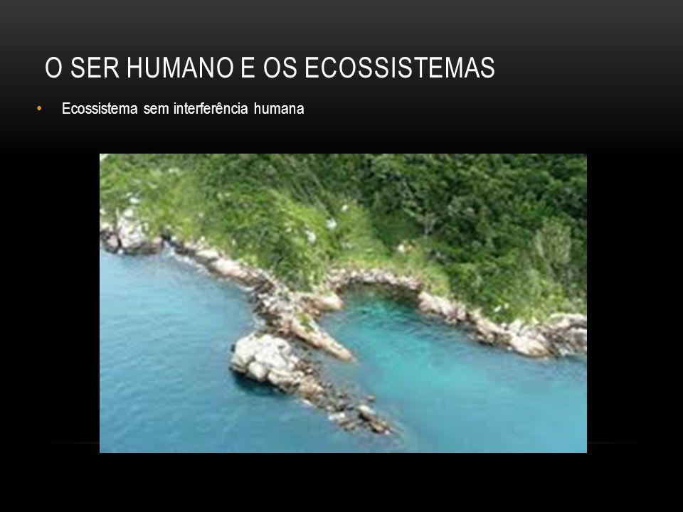 O ser humano e os ecossistemas