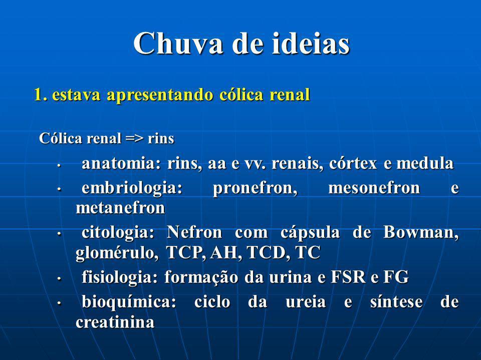 Chuva de ideias Cólica renal => rins