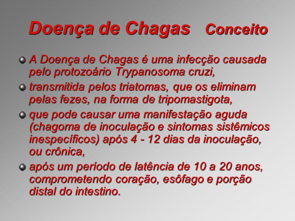 Doença de Chagas Conceito