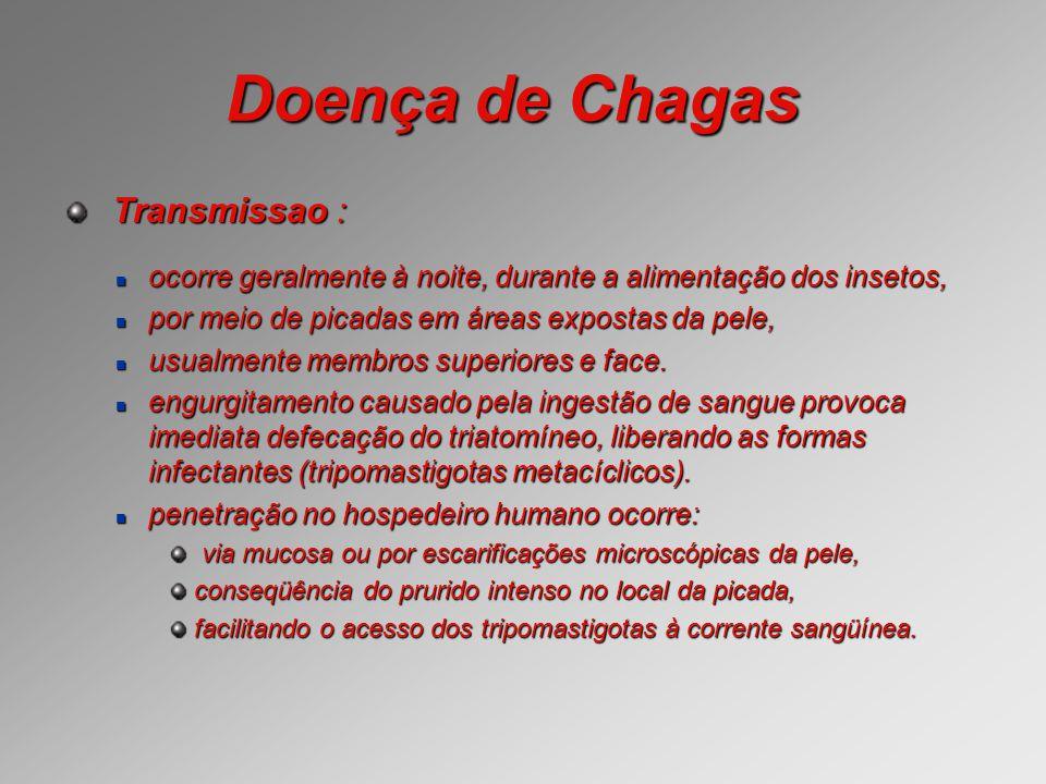Doença de Chagas Transmissao :