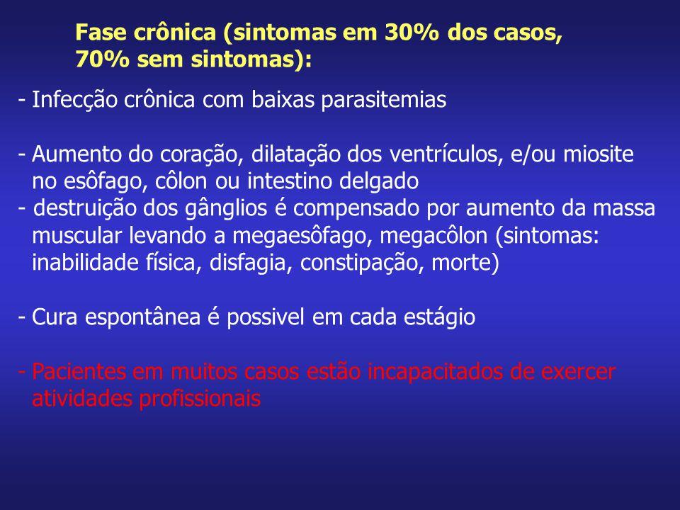 Fase crônica (sintomas em 30% dos casos,