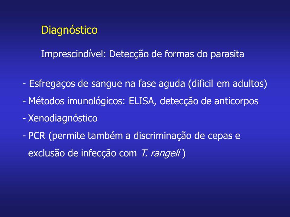 Diagnóstico Imprescindível: Detecção de formas do parasita