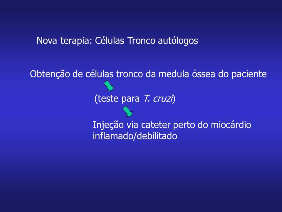 Nova terapia: Células Tronco autólogos