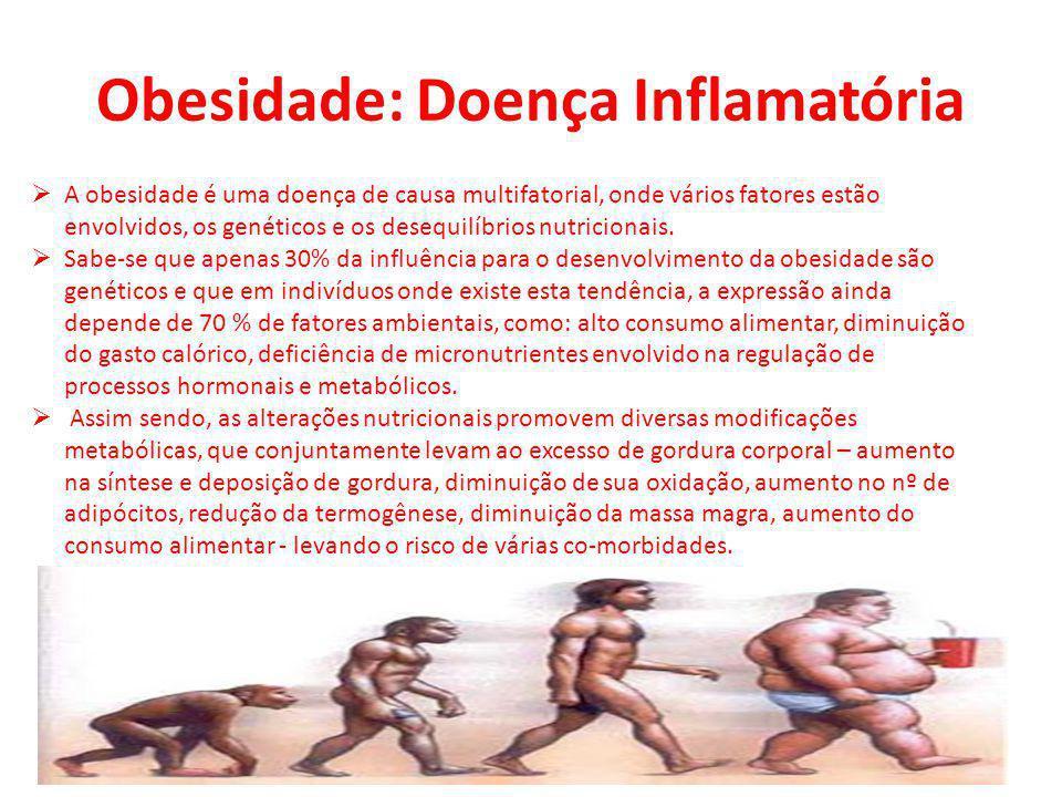 Obesidade: Doença Inflamatória