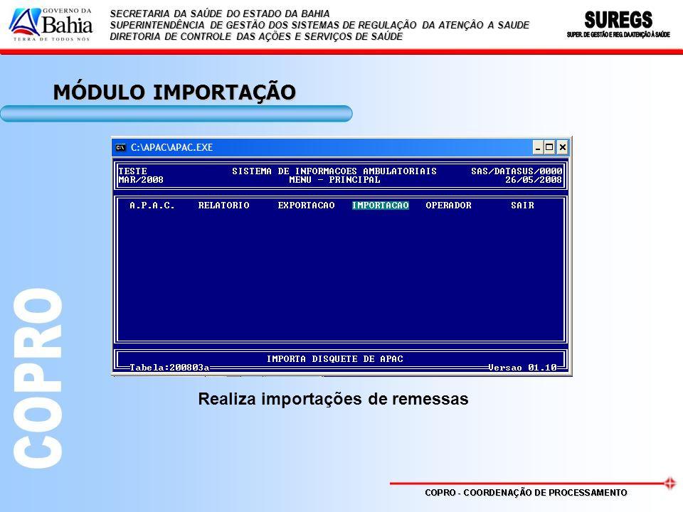 MÓDULO IMPORTAÇÃO Realiza importações de remessas