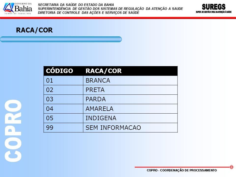 RACA/COR CÓDIGO RACA/COR 01 BRANCA 02 PRETA 03 PARDA 04 AMARELA 05