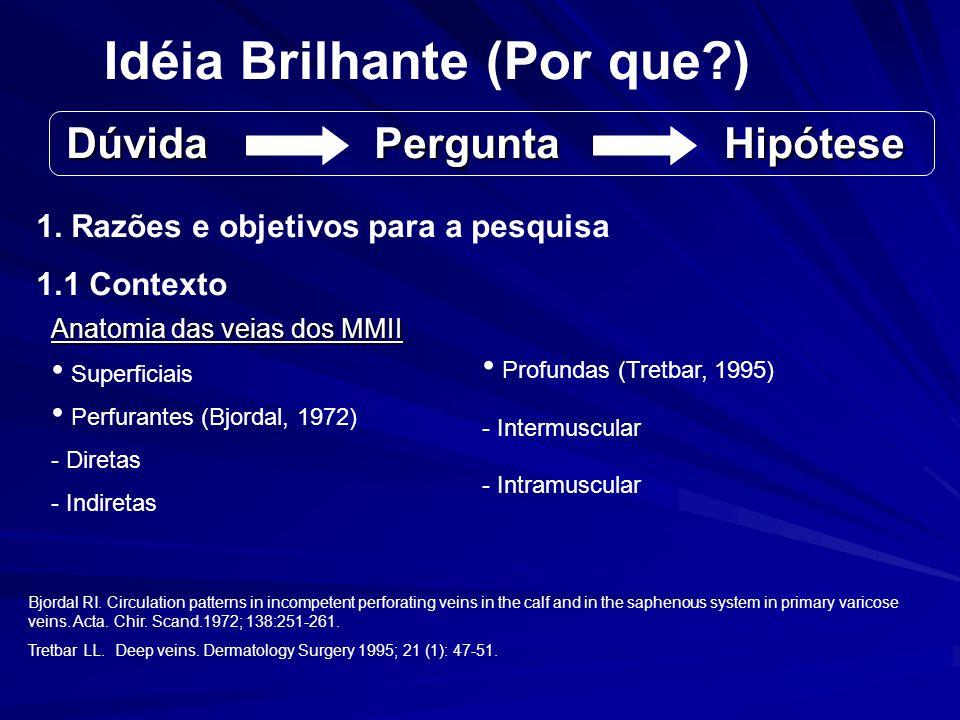 Idéia Brilhante (Por que ) Dúvida Pergunta Hipótese