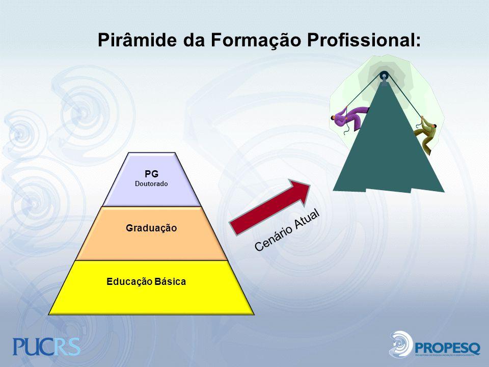 Pirâmide da Formação Profissional: