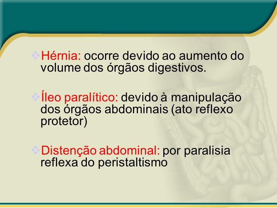 Hérnia: ocorre devido ao aumento do volume dos órgãos digestivos.