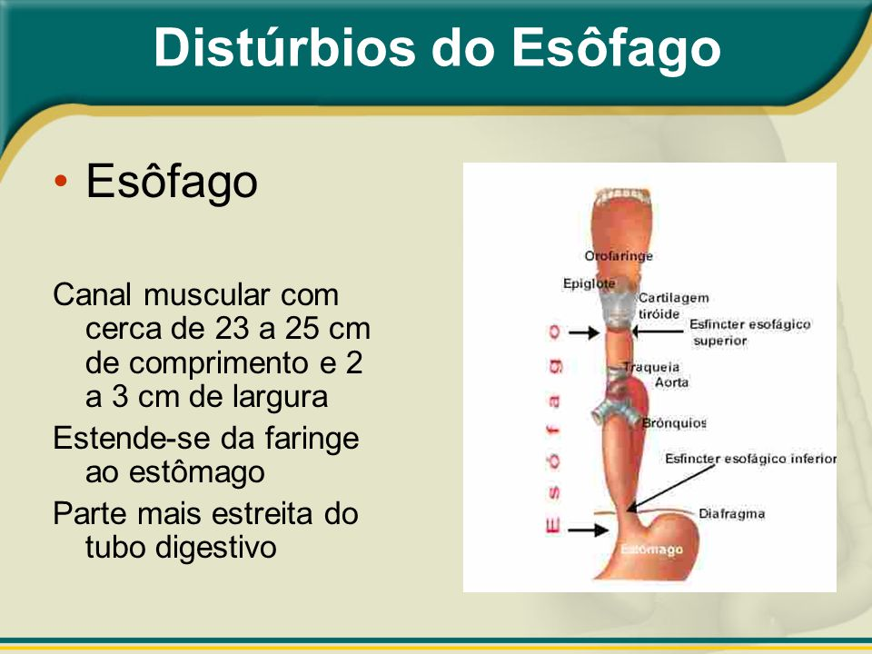 Distúrbios do Esôfago Esôfago