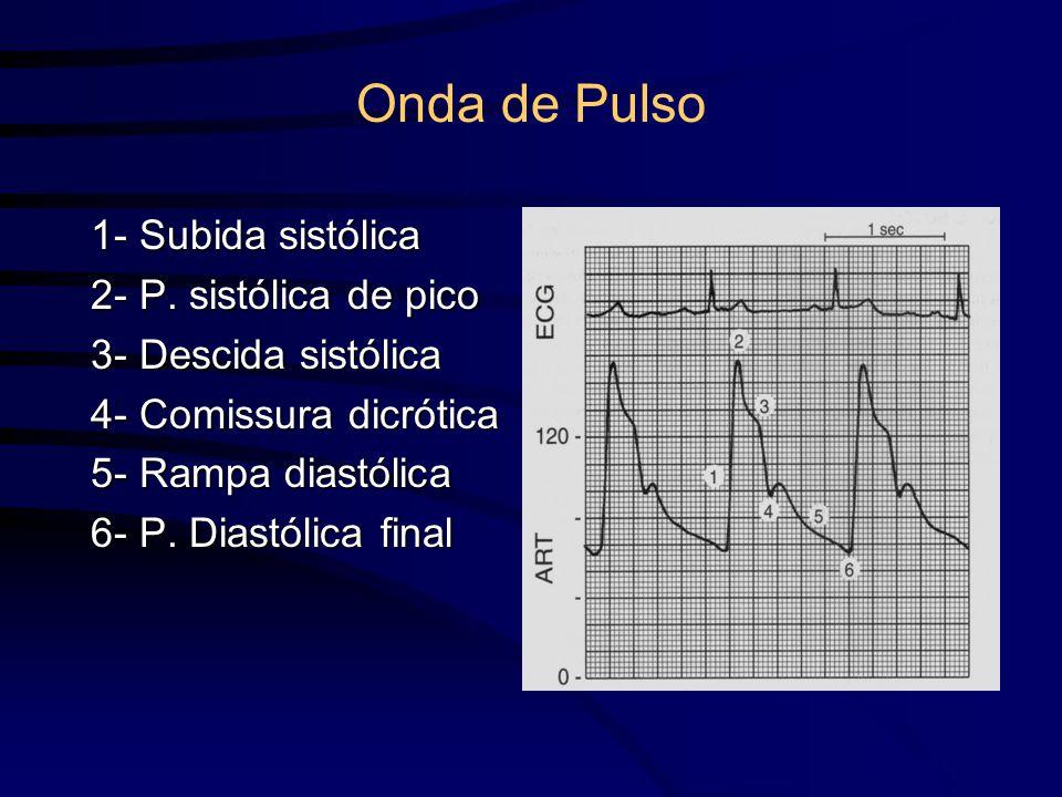 Onda de Pulso 1- Subida sistólica 2- P. sistólica de pico