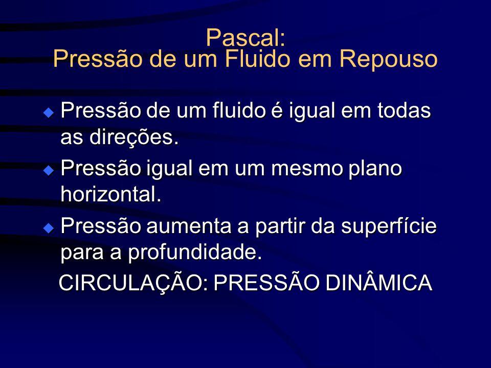 Pascal: Pressão de um Fluido em Repouso