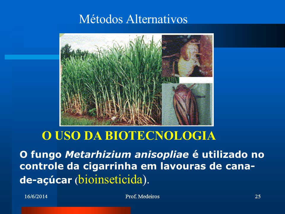 Métodos Alternativos O USO DA BIOTECNOLOGIA