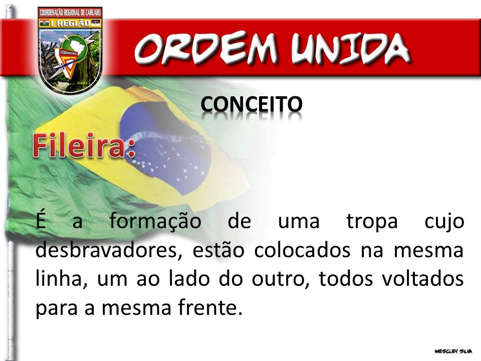 CONCEITO Fileira:
