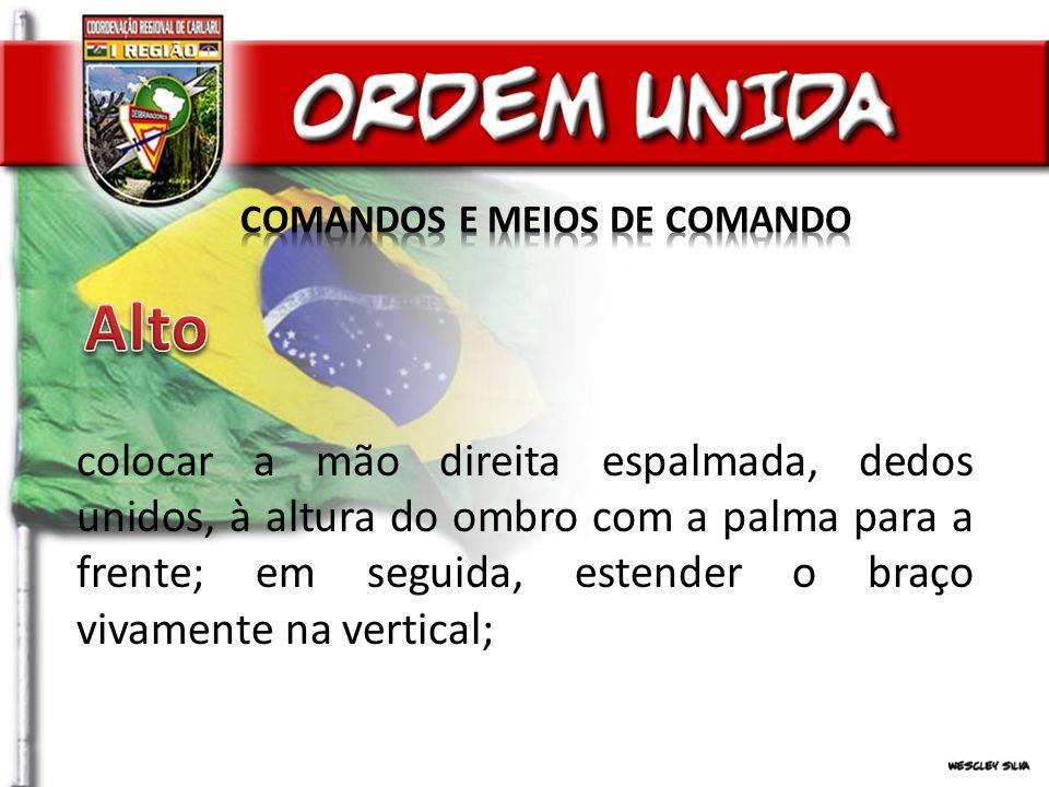 COMANDOS E MEIOS DE COMANDO