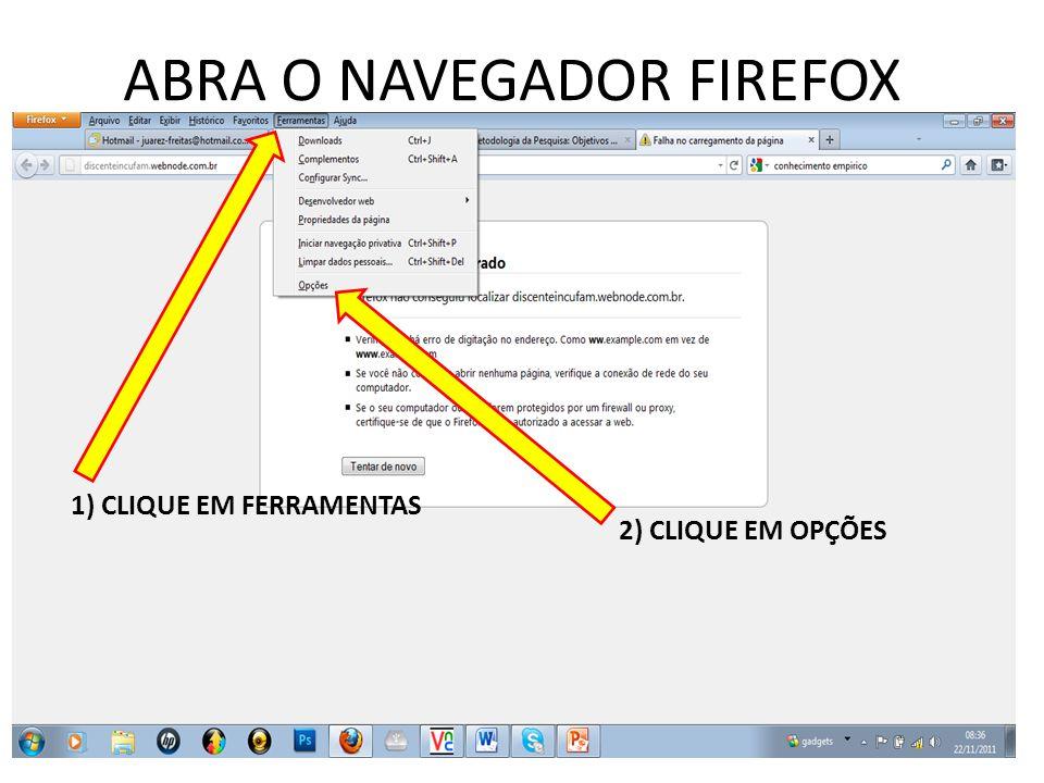 ABRA O NAVEGADOR FIREFOX