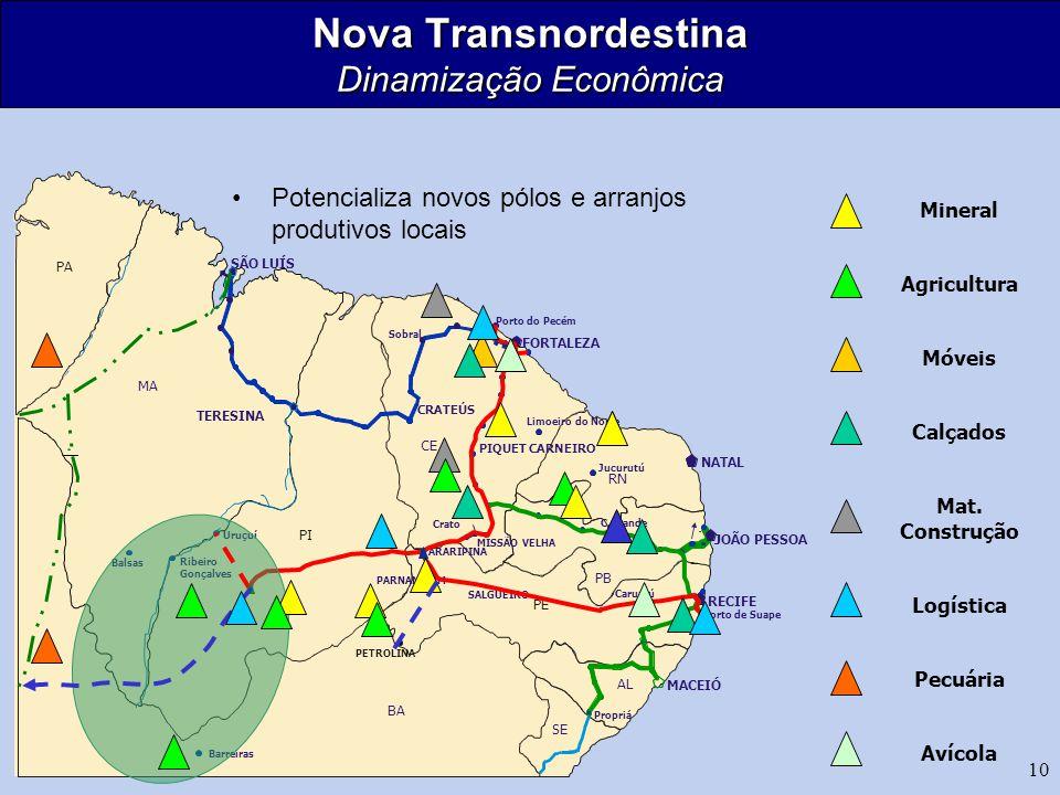 Nova Transnordestina Dinamização Econômica