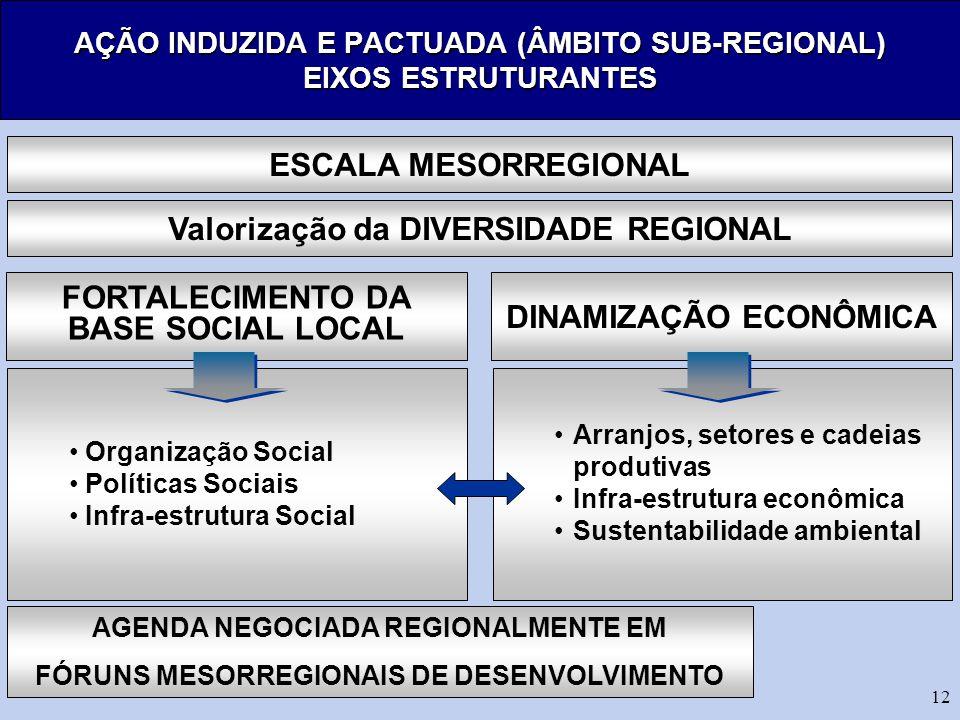 AÇÃO INDUZIDA E PACTUADA (ÂMBITO SUB-REGIONAL) EIXOS ESTRUTURANTES