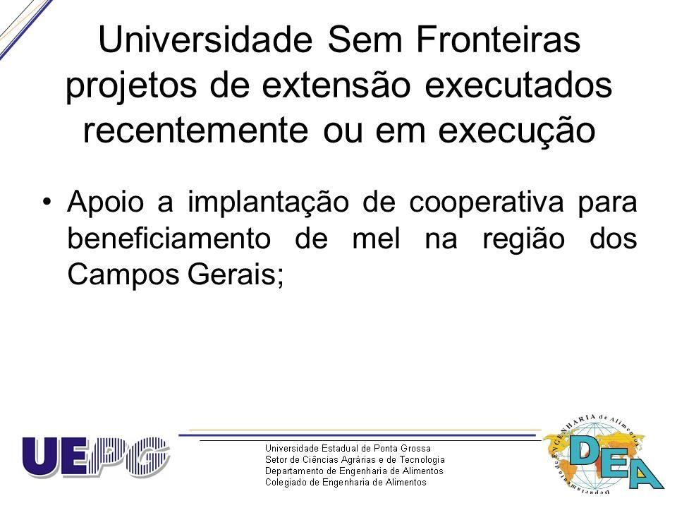Universidade Sem Fronteiras projetos de extensão executados recentemente ou em execução