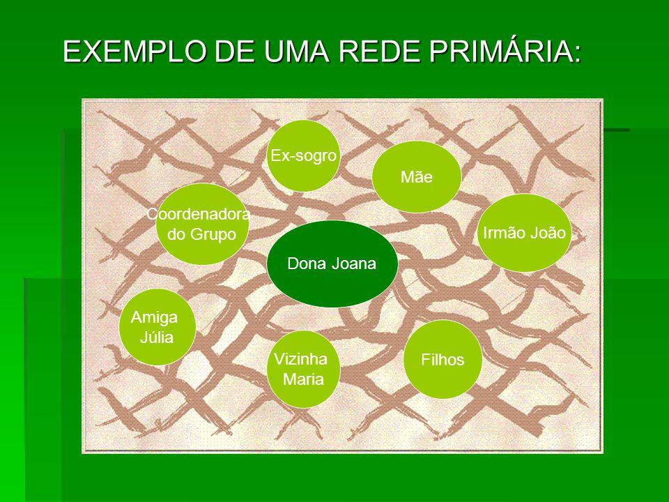 EXEMPLO DE UMA REDE PRIMÁRIA: