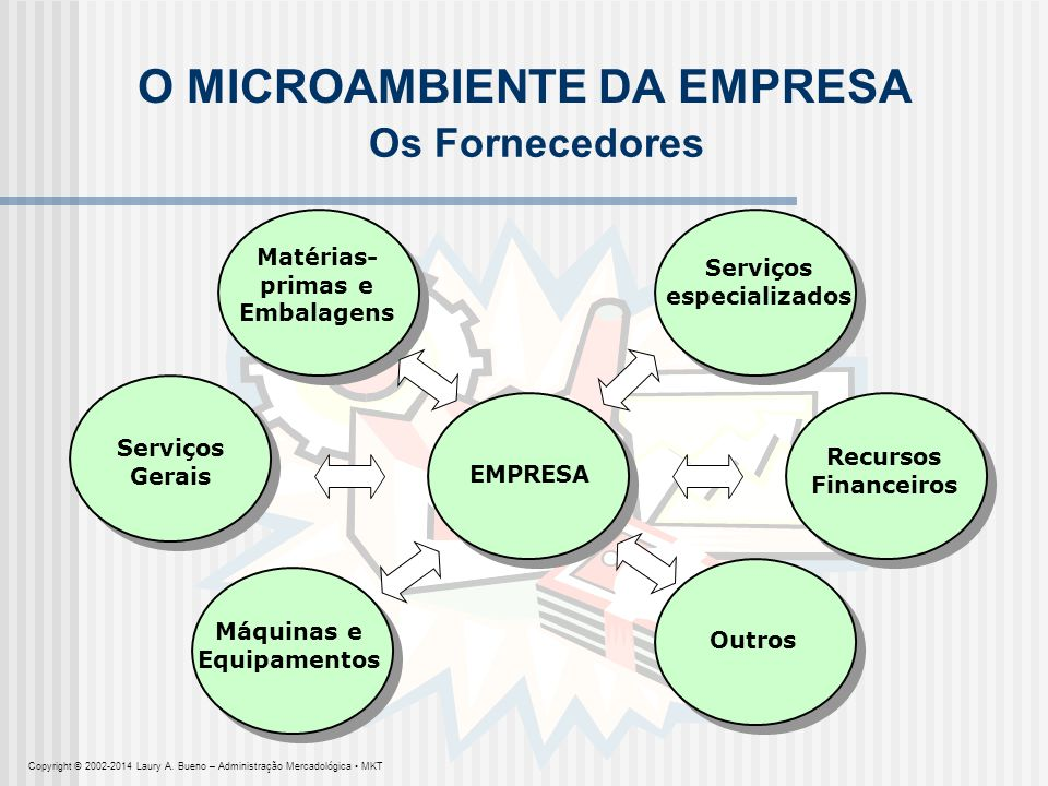 O MICROAMBIENTE DA EMPRESA