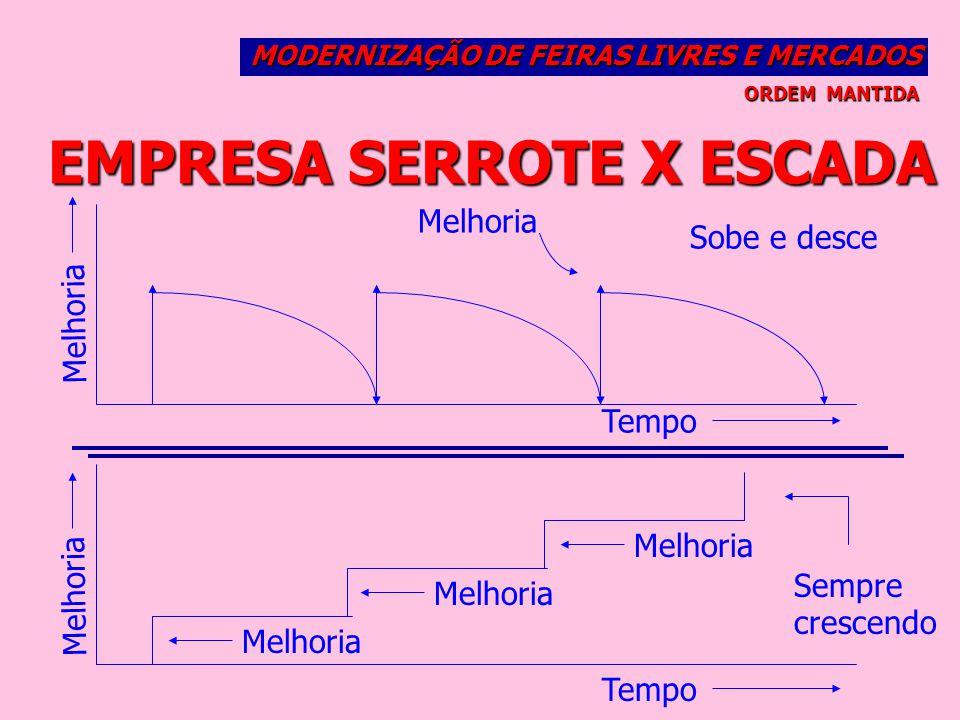 EMPRESA SERROTE X ESCADA
