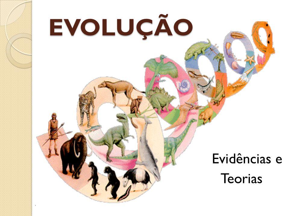 EVOLUÇÃO Evidências e Teorias