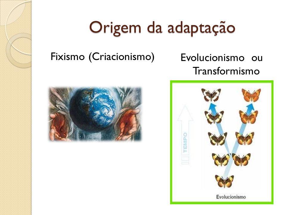 Evolucionismo ou Transformismo