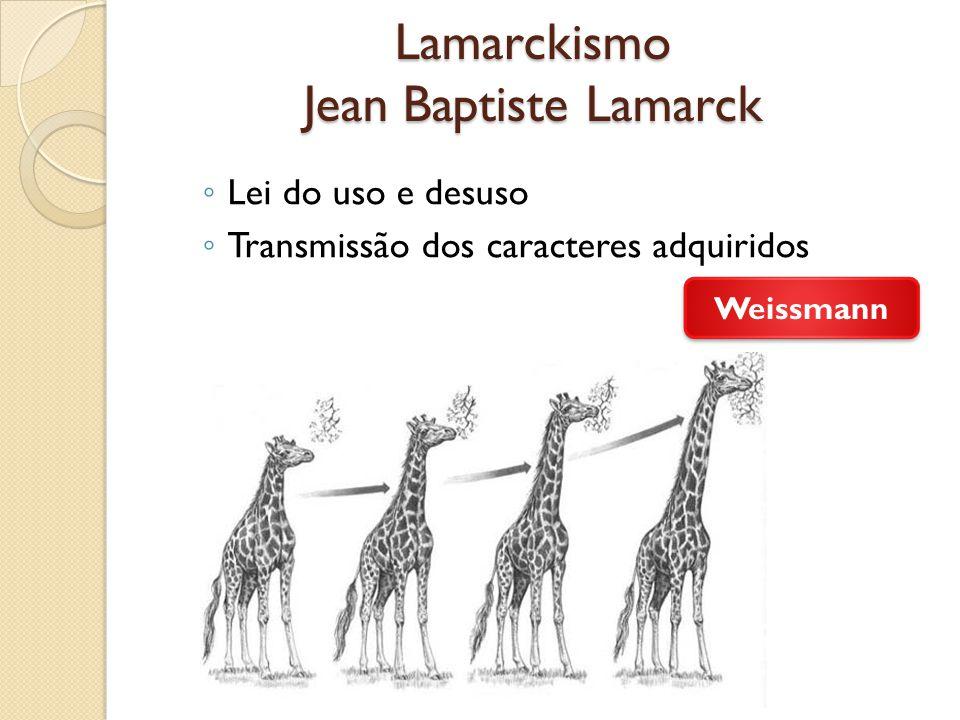Lamarckismo Jean Baptiste Lamarck