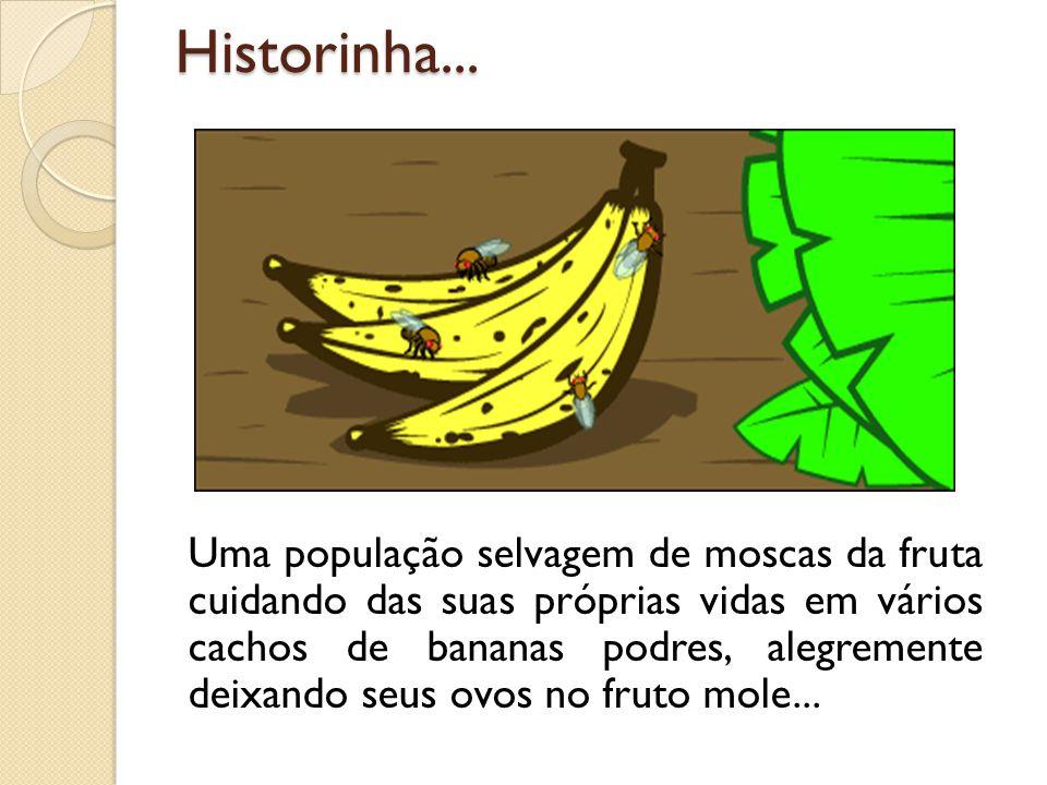 Historinha...