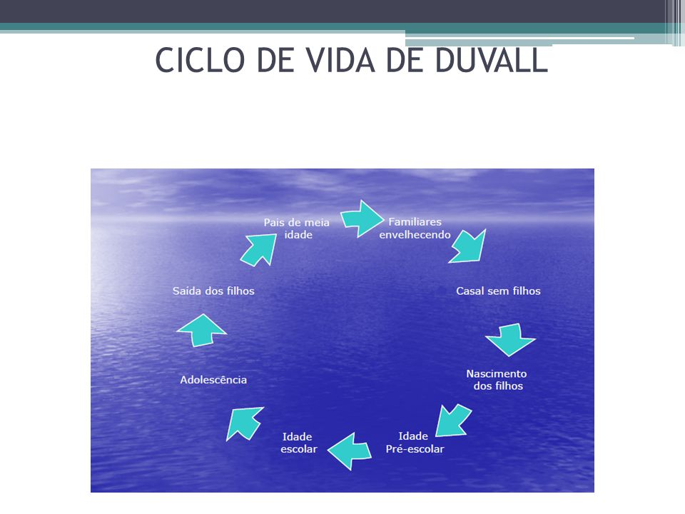 CICLO DE VIDA DE DUVALL