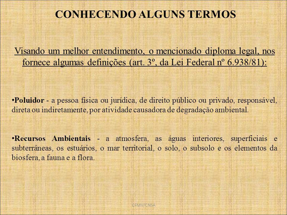 CONHECENDO ALGUNS TERMOS