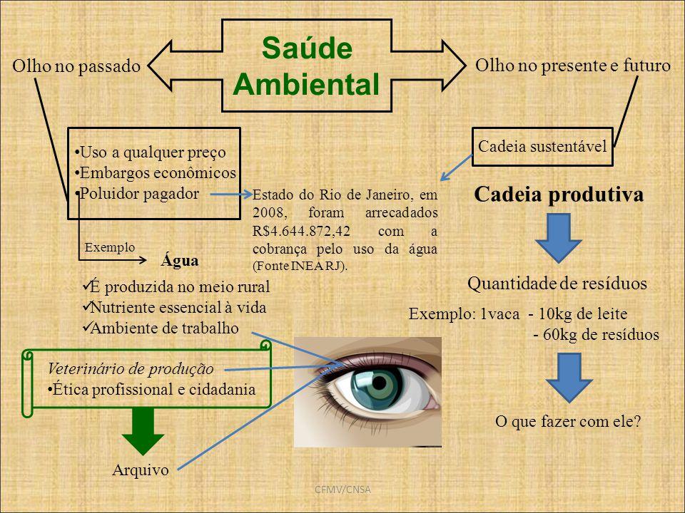 Saúde Ambiental Cadeia produtiva Olho no passado