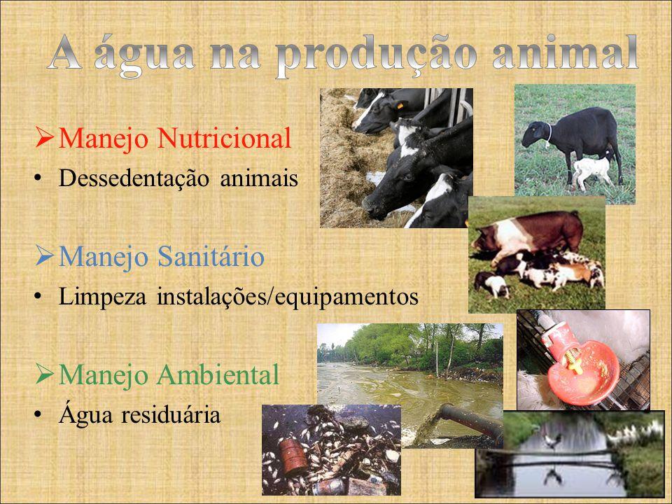 A água na produção animal