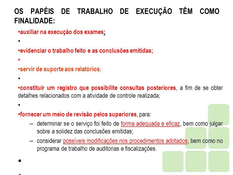 OS PAPÉIS DE TRABALHO DE EXECUÇÃO TÊM COMO FINALIDADE: