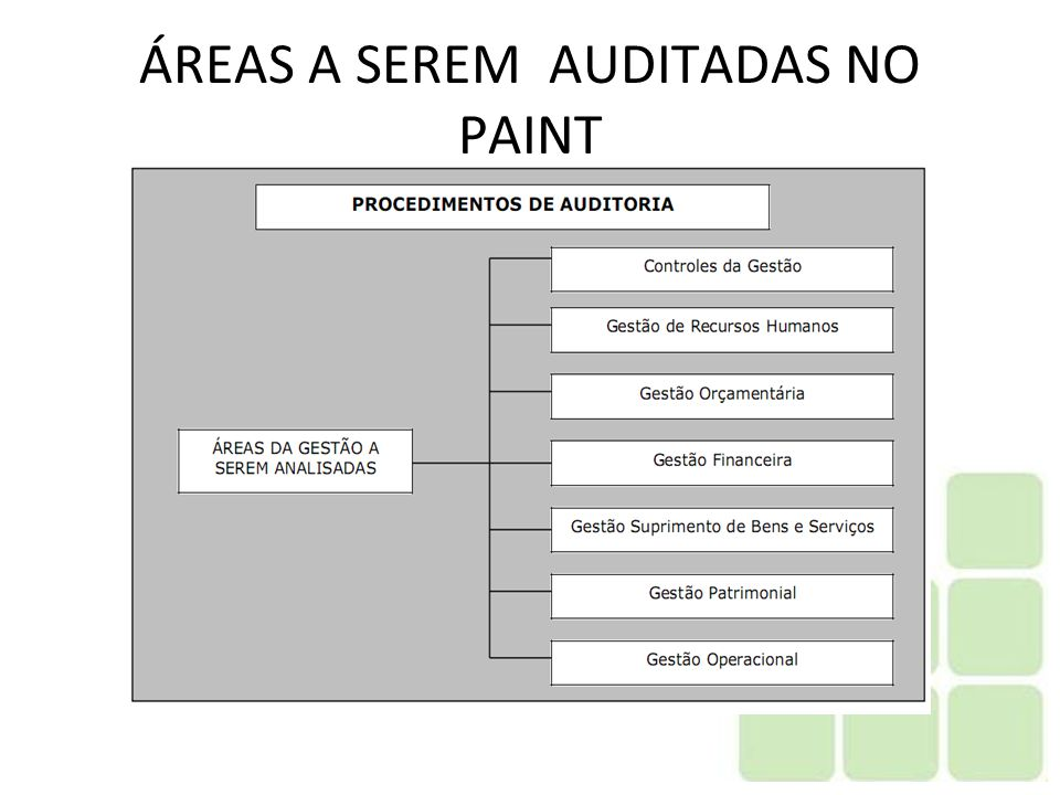 ÁREAS A SEREM AUDITADAS NO PAINT