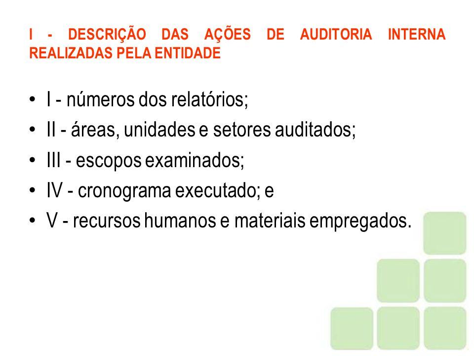 I - DESCRIÇÃO DAS AÇÕES DE AUDITORIA INTERNA REALIZADAS PELA ENTIDADE