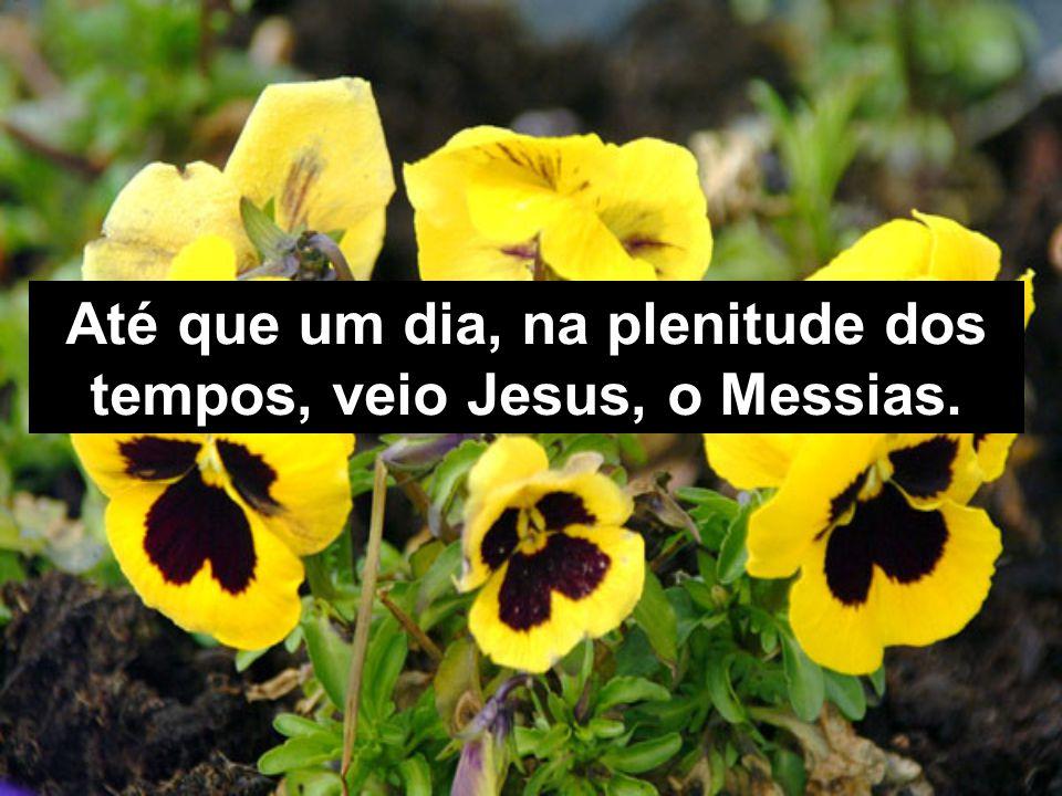 Até que um dia, na plenitude dos tempos, veio Jesus, o Messias.