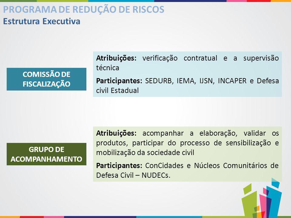 COMISSÃO DE FISCALIZAÇÃO GRUPO DE ACOMPANHAMENTO
