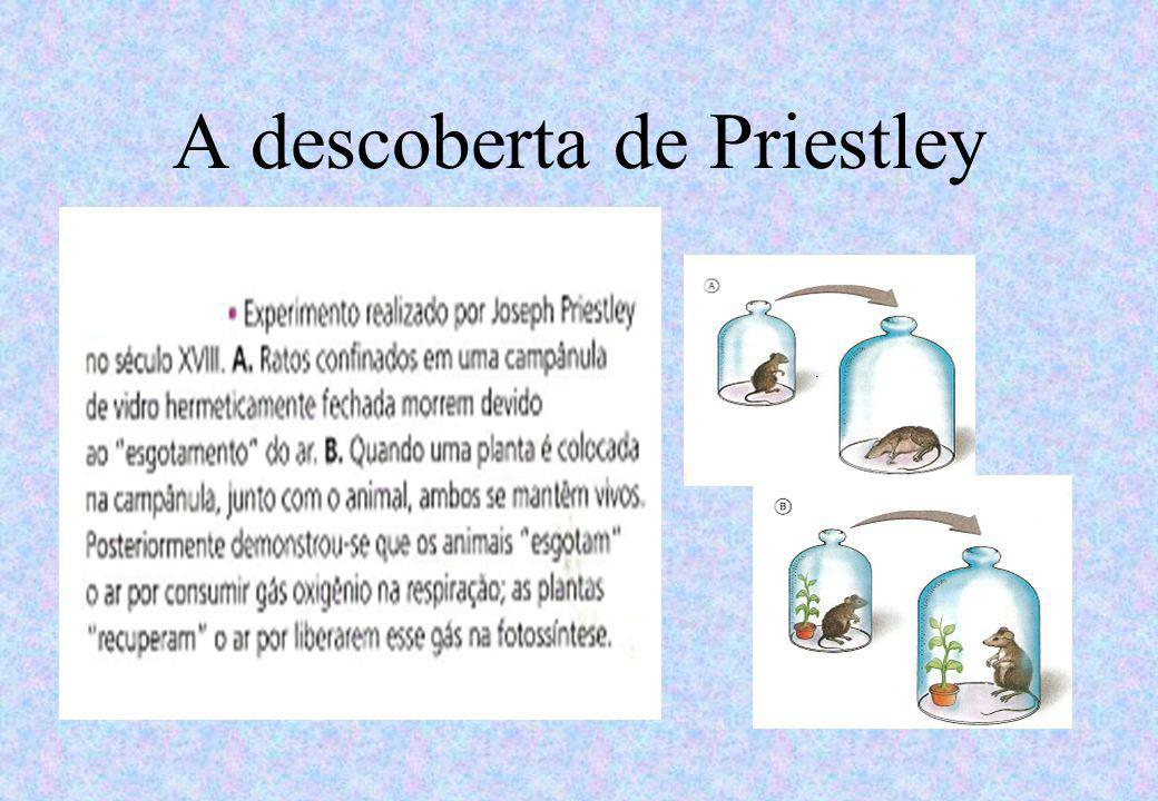 A descoberta de Priestley