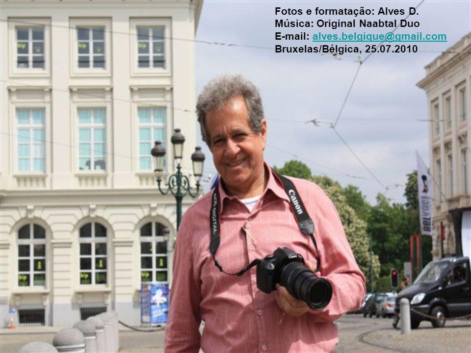 Fotos e formatação: Alves D.
