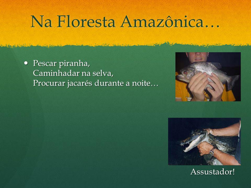 Na Floresta Amazônica…