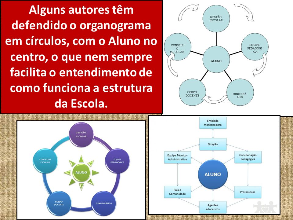 Alguns autores têm defendido o organograma em círculos, com o Aluno no centro, o que nem sempre facilita o entendimento de como funciona a estrutura da Escola.