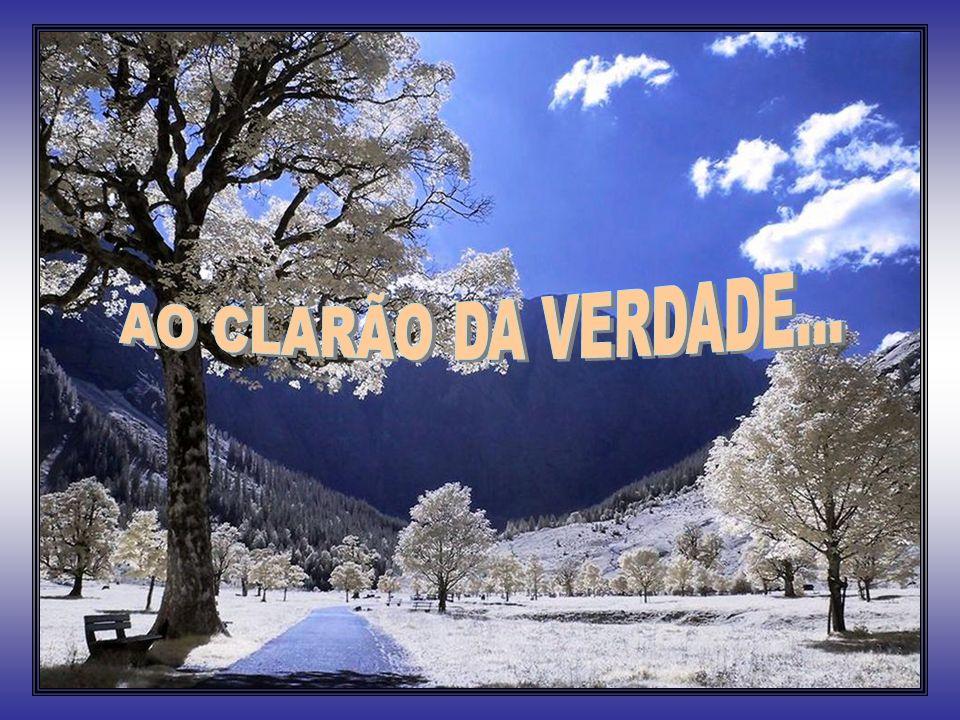 AO CLARÃO DA VERDADE...