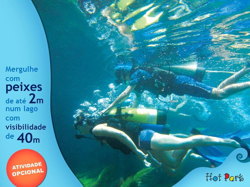 40m peixes Mergulhe com num lago visibilidade de de até 2m