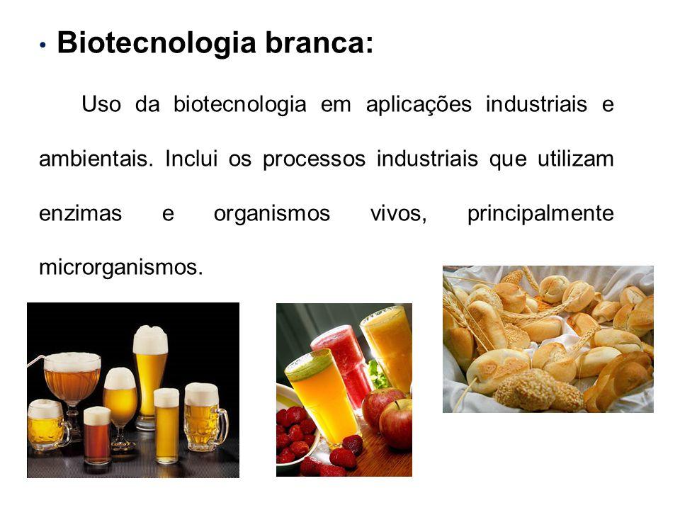 Biotecnologia branca: