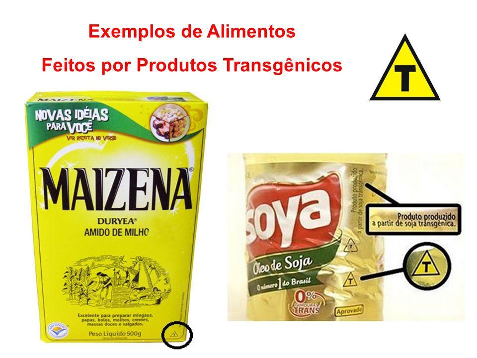 Feitos por Produtos Transgênicos