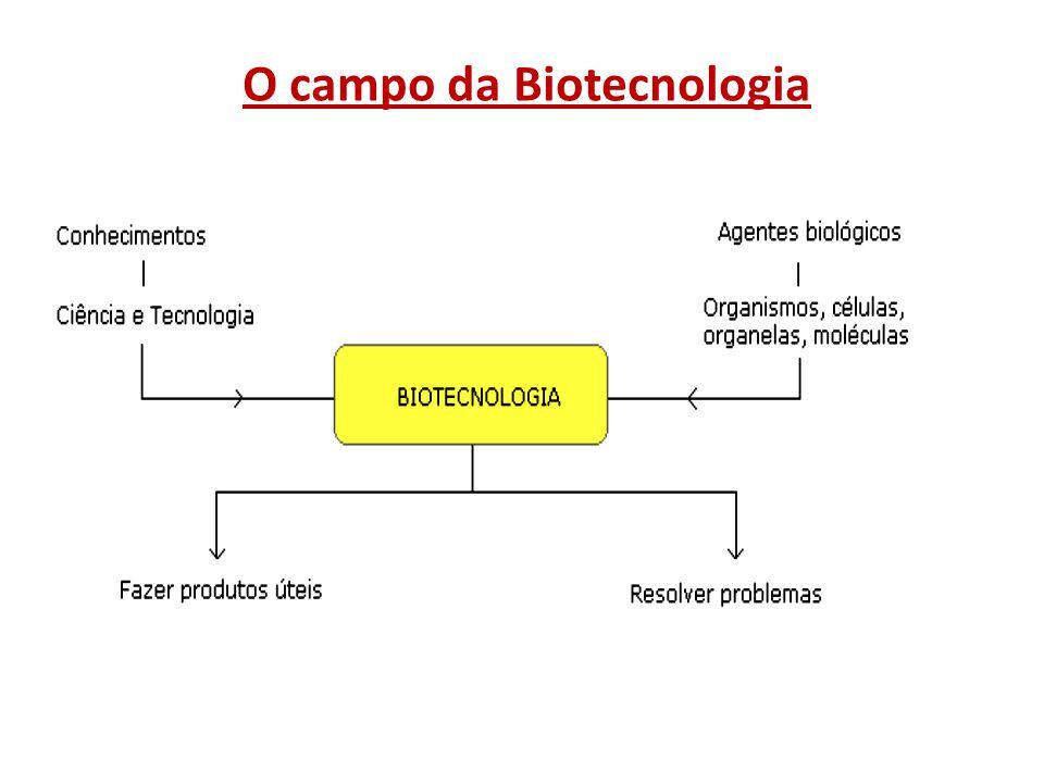 O campo da Biotecnologia
